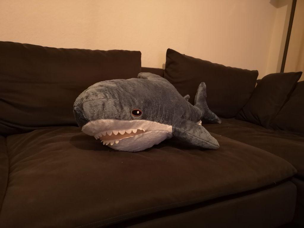"""Bennis IKEA-Plüschhai """"Haike"""" liegt auf dem Sofa"""
