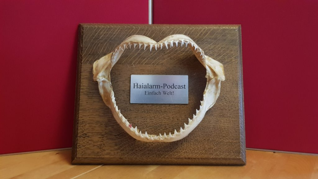 """Das Bild zeigt ein Haigebiss auf einer dekorativen Holzplatte mit einer Plakette. Diese trägt die Aufschrift """"Haialarm-Podcast. Einfach Welt!"""""""